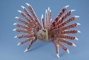 lglionfish