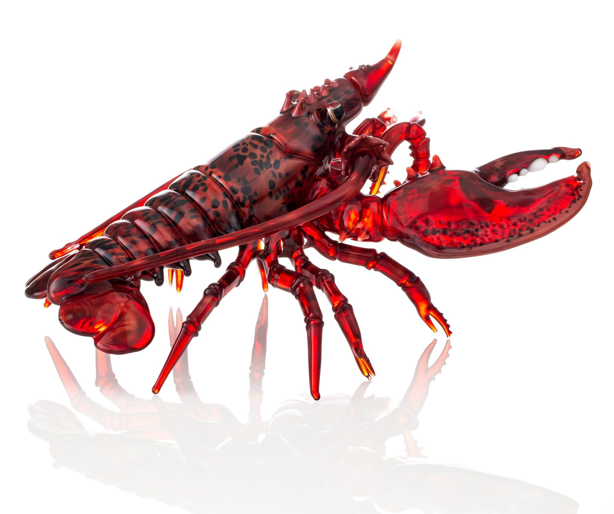 lobsterfunc3-2