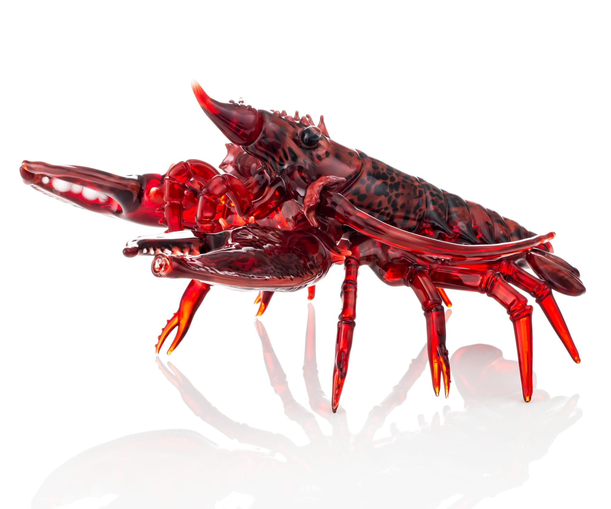 lobsterfunc3-4